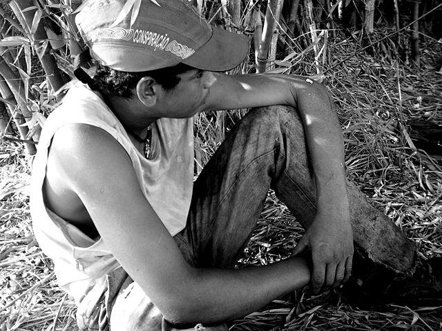 Volnei questiona, por exemplo, se os nossos políticos estão preocupados com os índices de emprego de trabalho infantil. Na imagem, um garoto, que aos 16 anos, trabalhava no corte de cana   © Cícero R. C. Omena / WikiCommons