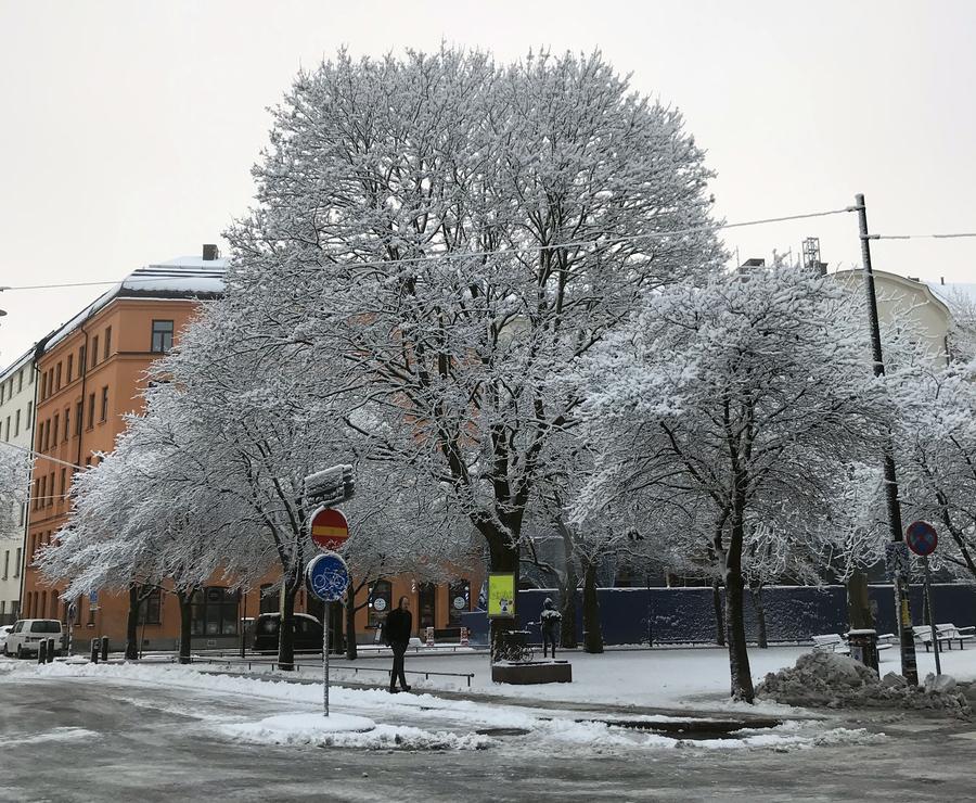 Rua de Estocolmo após nevasca em dezembro. © Lima Andruška