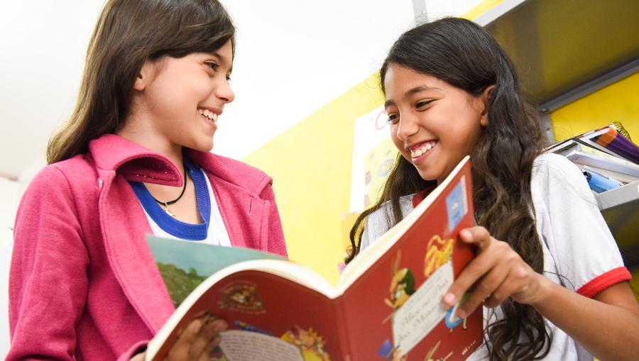 Projeto inclui na Política Nacional do Livro medidas de estímulo à criação, manutenção e atualização de bibliotecas públicas e escolares. Matéria agora segue para o Senado. | © Ascom / MEC